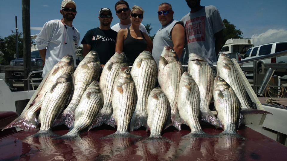 Kent Island Charter Fishing