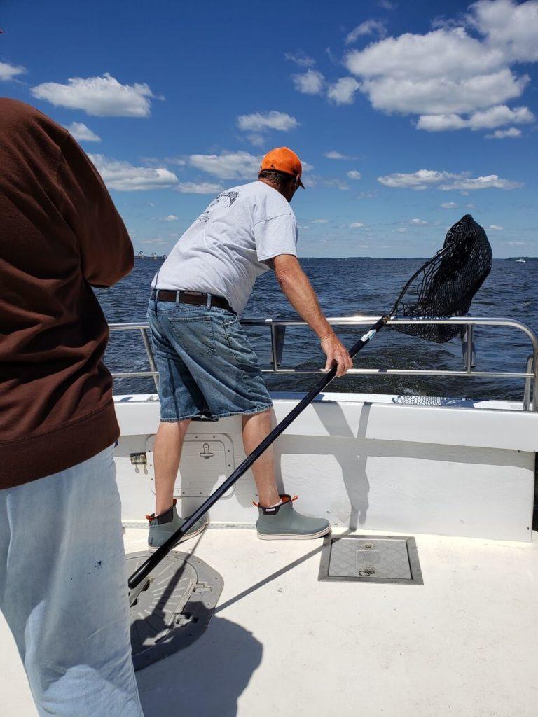 Kodiak Chesapeake Bay Charter Fishing