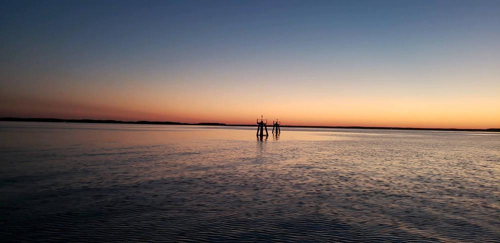 chesapeake-bay-charter-fishing-20-034